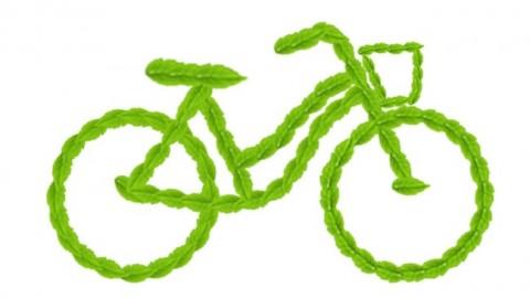 环保竹腾自行车