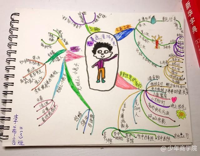 9岁          思维导图——动物