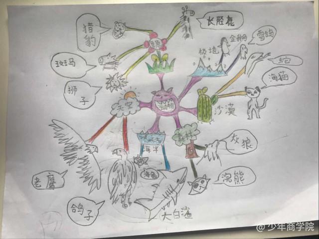 思维导图——动物