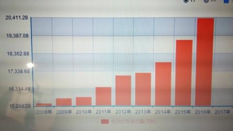 数据分析报告_乔楚