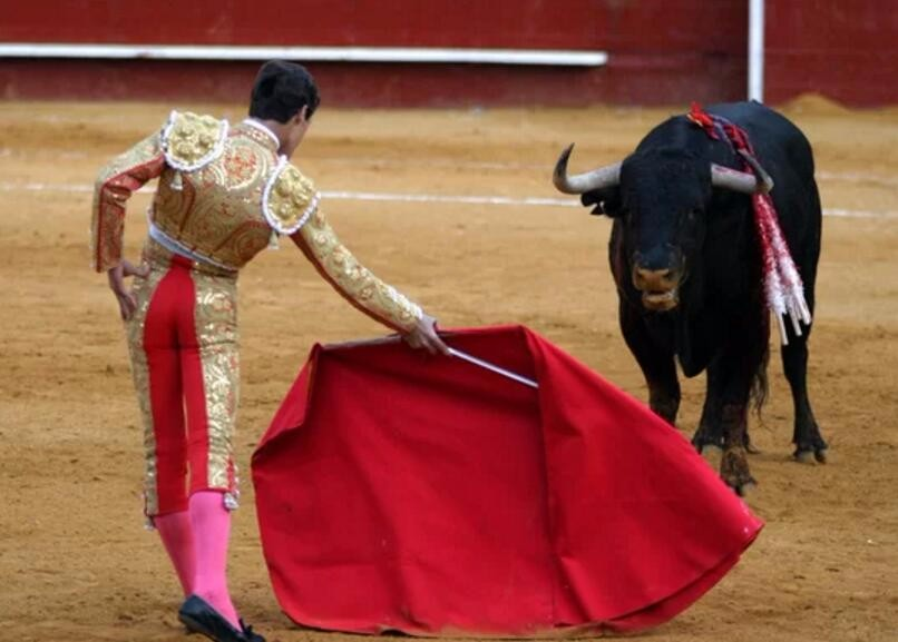 008-【生物】红色真的会刺激公牛吗?